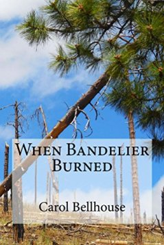 When Bandelier Burned